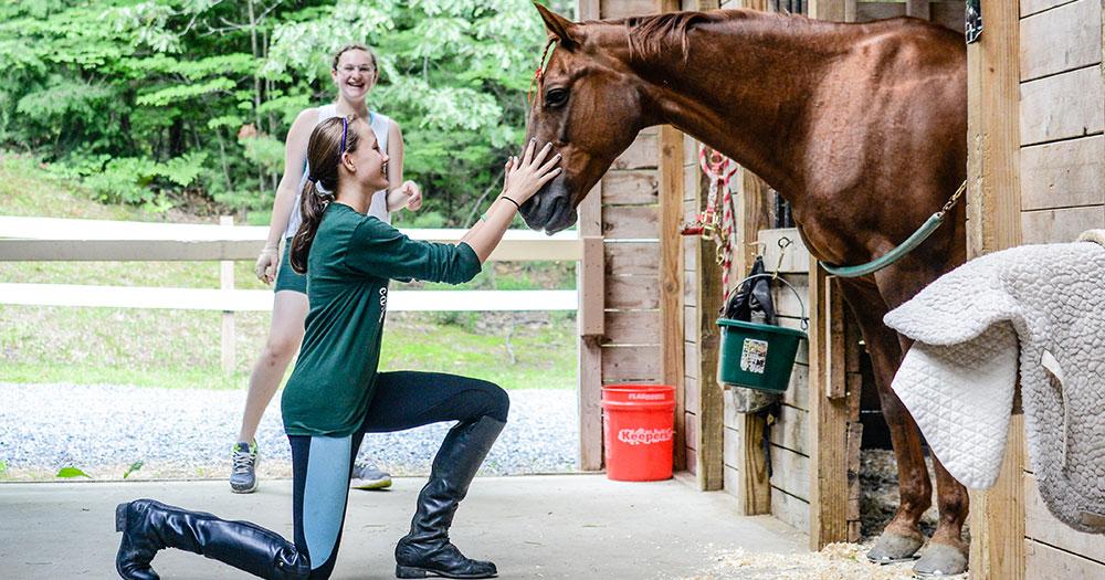 Equestrian at Vega